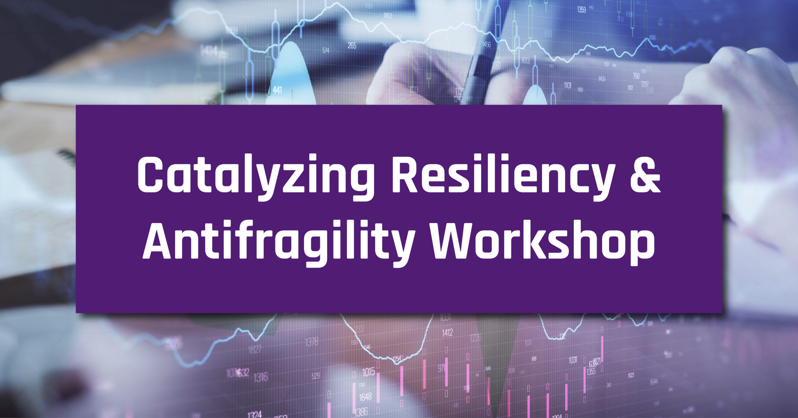 Catalyzing Resiliency and Antifragility 2-Day Workshop